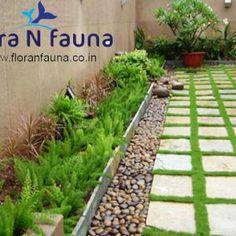 26 Best Landscaping Professional Kerala Images Landscaping Plants