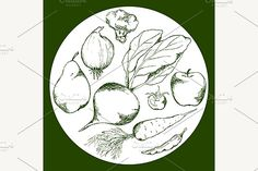 art, vector, vegetable, fruit, food, cherry, tomato, pear, beet, beetroot, carrot, apple, cabbage, cauliflower, onion, bow, ink, line, nature, natural, organic, vitamin, health, tasty, ingredient, fresh, raw, outline, realistic, agriculture, plant, leaf, vegetarian, diet, green, white, monochrome, isolated, abstract, graphic, decoration, illustration, design, artistic, drawing, hand, drawn, sketch, artwork, paint Plant Illustration, Graphic Illustration, Illustrations, Fruit Sketch, Back Art, Scene Creator, Vector Graphics, Monochrome, How To Draw Hands