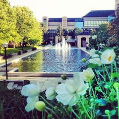 A great view of the Engineering building on North Campus.