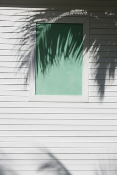 Symmetry and order from the lines and window, with the suggested subject of a palm inserted through the use of its silhouette - genius shot!