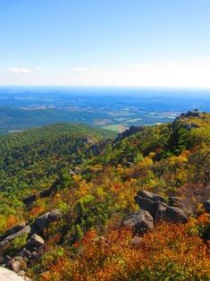 There's no day-hike within driving distance of the DC area that's more popular than Old Rag Mountain in the Shenandoah Mountains, and with good reason. The 9-mile loop offers gorgeous views, fun ro...