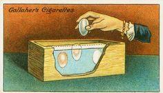 Для долгого хранения яиц нужно просто взять и положить их в соль, после чего обязательно переместив их в сухое место.