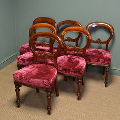 Stunning! Victorian balloon back dining chairs with crushed burgundy velvet upholstery.