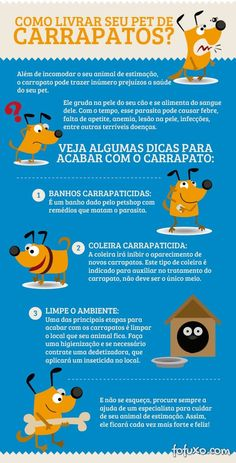 Dicas de hoje: Carrapatos, cuidados com seu Pet! #petmeupet #carrapatos #cachorro #gatos