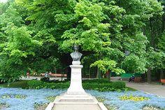 Teiul lui Eminescu Iasi Tourist Places, Sidewalk, Urban, Country, Mai, Beautiful, Spaces, Travel, Viajes
