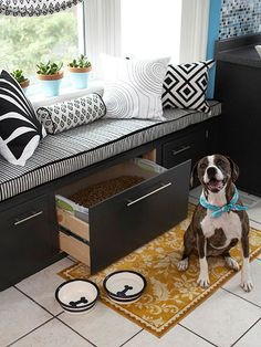 Pet Paradise. My dogs would love this prime window seat! Perfect for barking all day