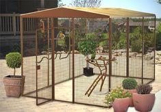 Outdoor aviary for all our parrots.