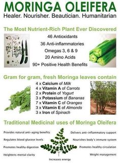 Fantastic Health Benefits of Moringa Oleifera Moringa Benefits, Health Benefits, Ginger Benefits, Health Facts, Health And Nutrition, Complete Nutrition, Proper Nutrition, Nutrition Tips, Health Diet