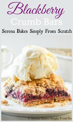 Blackberry Crumb Bars. A perfect use for a bounty of blackberries! www.serenabakessimplyfromscratch.com