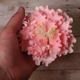 Pink Gumpaste Large Garden Peony sugarflower cake toppers perfect for cake decorating rolled fondant wedding cakes and birthday cakes.  Wholesale cake supply & sugarflowers.  Garden Peonies - Pink. Caljava
