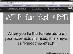 Makes sense WTF FACT