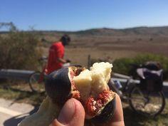 Il viaggio di Darwish: la Puglia come non l'avete mai vista