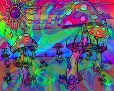 Google Image Result for http://3.bp.blogspot.com/_4A9r9yKkkNs/SRVf9ACDXnI/AAAAAAAABWU/9ELuj_JYsAM/s400/Psychedelic_Mushrooms.jpg