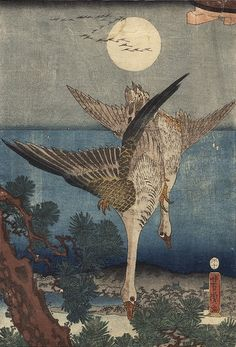 Yoshitora, Utagawa (Japanese, Ukiyo-e, active c. 1840-1880): Descending Geese, 1858. Color woodblock print
