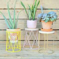 Our plantstands