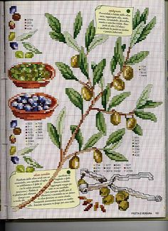 lavender and olives Cross Stitch Fruit, Cross Stitch Kitchen, Cross Stitch Flowers, Cross Stitching, Cross Stitch Embroidery, Cross Stitch Patterns, Le Point, Beading Patterns, Provence