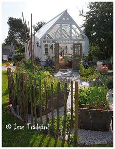 Växthusbygge i Isas trädgård!