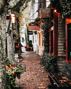 Quaint street in autumn – Tattoos – Cozy Places Beautiful World, Beautiful Places, Autumn Cozy, Autumn Fall, Autumn Aesthetic, Photos Voyages, Cozy Place, Adventure Is Out There, Nantucket
