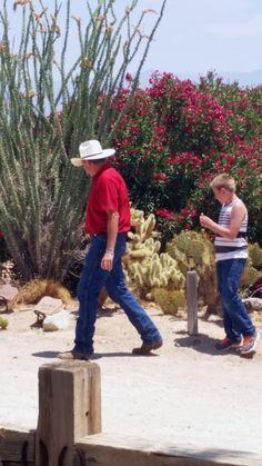 AZ Dude Ranch Stagecoach Trails Guest Ranch