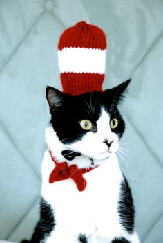 The Cat In The Hat - Dr. Seuss - hmmm, something tells me he would not like it with a fox.  He would not like it  in a box.