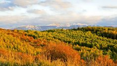 Colorado travel: 5 scenic byways for fall colors. #Colorado #Travel #Fall