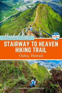 """Moanalua Valley Middle Ridge trail to Haiku Stairs or Stairway to Heaven by That Adventure Life. Directions to Moanalua Valley Middle Ridge, the legal """"back way"""" to get to Haiku Stairs (also called Stairway to Heaven) in Oahu, Hawaii. A wanderlust travellers and hikers paradise view of dreams. A bucket list adventure to include in your list of things to do while in Oahu. Grab your hiking gear, let's go! For all the details, this blog is it! Read now! Adventure Bucket List, Life Is An Adventure, Adventure Travel, Hawaii Hikes, Oahu Hawaii, Hiking Gear, Hiking Trails, Trail Guide, Us Travel Destinations"""