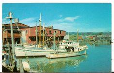 Undated Unused Postcard Fishing Boats and Dock at Rockland Maine ME - Advintage Plus