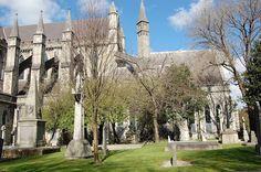 St Patrick's Cathedral -   Dublin, Ireland  (By C Walton)