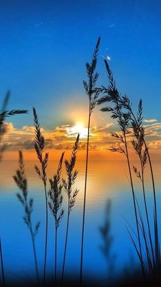 nascer do sol - Life ideas Beautiful Nature Wallpaper, Beautiful Sunset, Beautiful Landscapes, Sunset Photography, Landscape Photography, Landscape Art, Nature Pictures, Beautiful Pictures, Beautiful Landscape Pictures