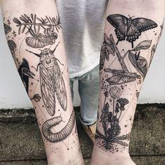 Geometric Flora + Fauna