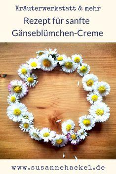 Bellis Perennis, Flower App, Cashew Butter, Feet Care, Flower Delivery, Flower Pots, Flowers, Herbs, Diy