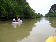 Excursión de kayack por el rio Krabi