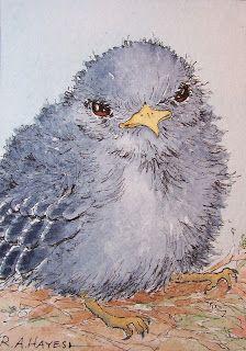 Watercolor Paintings by RoseAnn Hayes:Baby Bird