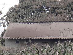 Afectación por caída de ceniza debido a la actividad actual del volcán Tungurahua  Figura 1. Acumulación de ceniza en el techo de una vivienda del sector Choglontus. Foto: V. Lema (IG-EPN).