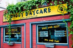 Great store front signage done by the Speedpro Signs Nelson BC location for Doggy Daycare!