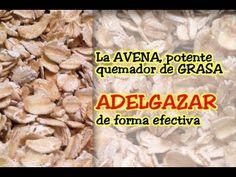 La AVENA, BAJAR DE PESO de forma efectiva - http://dietasparabajardepesos.com/blog/la-avena-bajar-de-peso-de-forma-efectiva/