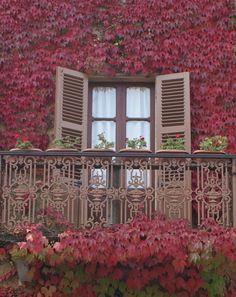 Italian window, Bossolasco Province of Cuneo, Italy