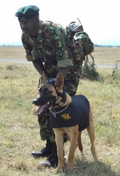 Africa is Africa because of its animals and at Ol Pejeta Conservancy two generations of dogs work tirelessly to secure the survival of a species.