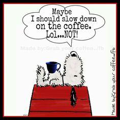 Snoopy's Ridiculous idea...
