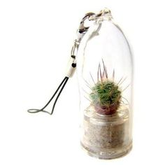 Plantiny is a miniature living plant - a cactus or a flower, placed in a small transparent container with attached string. Plantiny is a unique gift that can be used as a mobile phone charm, key chain, bag accessory, hung on a rear-view mirror, placed in work stations, on computers or anywhere else you would like to add a little freshness and eco-individuality. Plantiny requires occasional watering and may be replanted in a few months when the capsule becomes too small. To wa