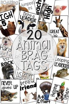 Brag Tags can transform the climate of your classroom in a positive way! Read this post about how brag tags can be organized, stored, earned, and more! Boys are sure to LOVE this set of brag tags with all the real photos of animals! Classroom Discipline, Classroom Behavior, Classroom Themes, Brag Tags, Help Teaching, Teaching Writing, Teaching Ideas, Effective Classroom Management, Life Coach Quotes