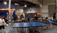 Ping pong head