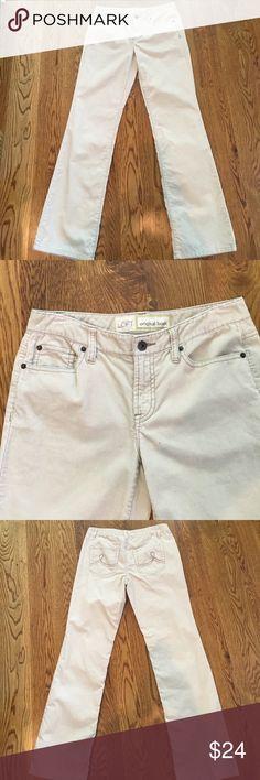 Ann Taylor corduroy pants Ann Taylor corduroy pants off-white Soft and comfortable Ann Taylor Pants