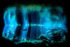 British Underwater Photographer of the Year 2017 - <i>Out of the Blue</i> Kukulkan Cenote on Mexico's Yucatan Peninsula forms part of the Chac Mool system and is noted for the spectacular light effects as the sun penetrates the darkness. I left my strobes behind for the natural light shot I wanted and positioned myself in the shadows of the cavern. Moving my eye around the viewfinder, I could see that the rock outline of the cavern around me made for a pleasing symmetry and I adjusted my…