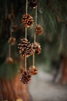 pine cones spritzed with glitter - awesome backdrop or suspended above a table // photo by Arina B Photography // http://ruffledblog.com/festive-christmas-celebration-shoot