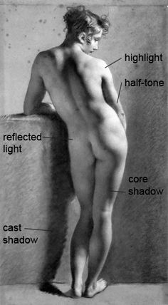 Art Tutorial - Light and form: Learn how to predict and draw the fall of light onto basic forms, such as a sphere. When you study basic forms, you learn much of what you need to know to draw the figure and portrait.