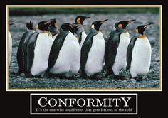 Poster Conformity -ORIGINAL- Barney Stinson Poster How 3 / 13?I met your Mother-Poster motivational Poster Office Poster-Barney Stinson Poster penguin Office Poster motivational Poster penguin Poster penguins Poster: Amazon.de: Bürobedarf & Schreibwaren