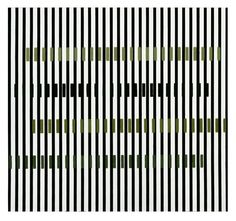 Cruz Diez, Induction Chromatique. Série Adri Cuatro, 1999Venezuelan art - Cruz Diez Diseño Cromático de Carlos Cruz Diez, BailadoresMore Pins Like This At FOSTERGINGER @ Pinterest