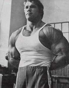 Arnold Schwarzenegger - Shoulder Striations