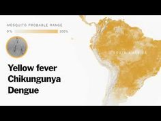 Understanding Zika virus!